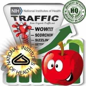 Buy Nih.gov Website Traffic