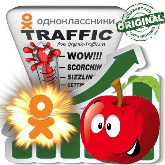 Buy Odnoklassniki (OK.ru) Referral Web Traffic
