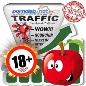 Buy Pornlab.net Adult Traffic