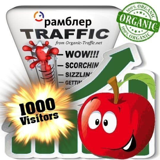 buy 1000 rambler organic traffic visitors