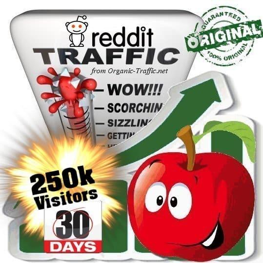 250k reddit social traffic visitors in 30 days