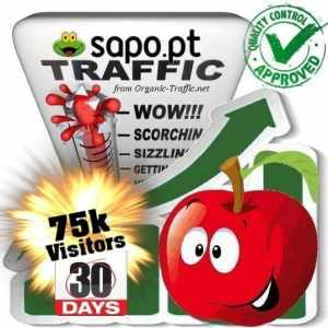 buy 75.000 sapo.pt search traffic visitors within 30 days
