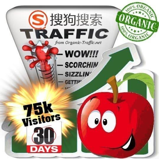 sogou organic traffic visitors 30days 75k
