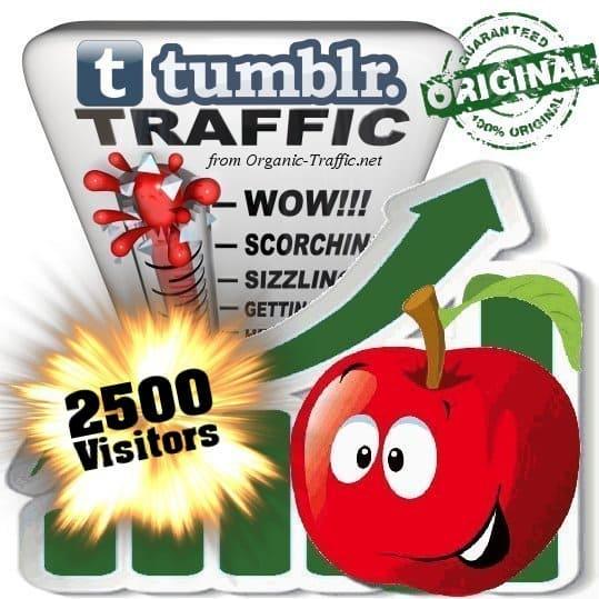 buy 2500 tumblr social traffic visitors