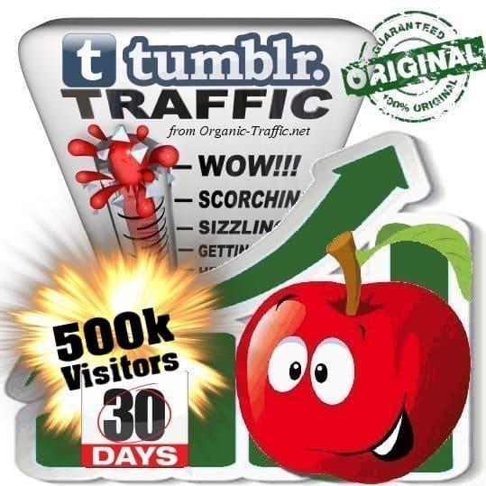 buy 500k tumblr social traffic visitors in 30 days