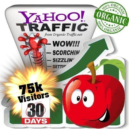 yahoo organic traffic visitors 30days 75k