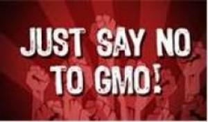 """NO GMO Pease"""