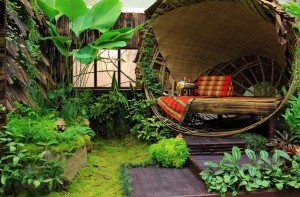 patio and apartment organic gardening