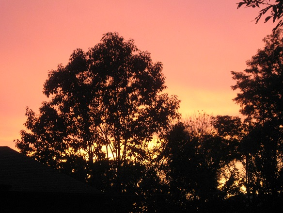 late summer sunset 2