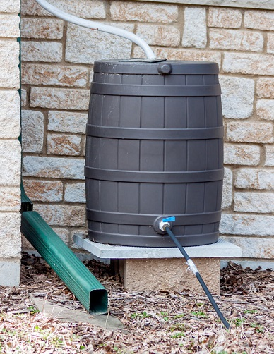 rain barrel saving water