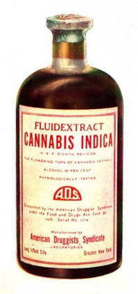 cannabis oil indica