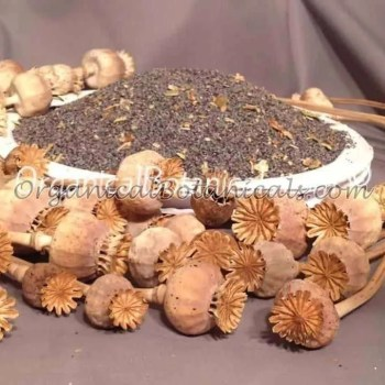 "Unwashed ""Filthy' Papaver Somniferum Opium Poppy Seeds 