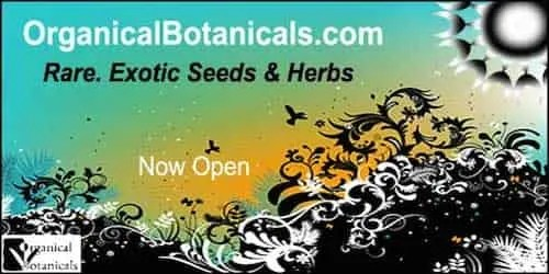 Organical Botanicals - Rare, Exotic, Odd and Unusual - Seeds | Supplements | Specimens | Spices