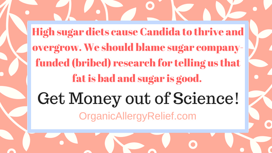 Did Candida Cause Allergies and Food Intolerance? | Organic Allergy Relief