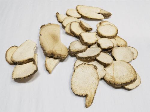 Bai Zhi Organic Chinese Herbs