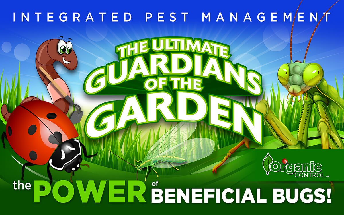 INTEGRATED PEST MANAGEMENT: THE POWER OF BENEFICIAL BUGS