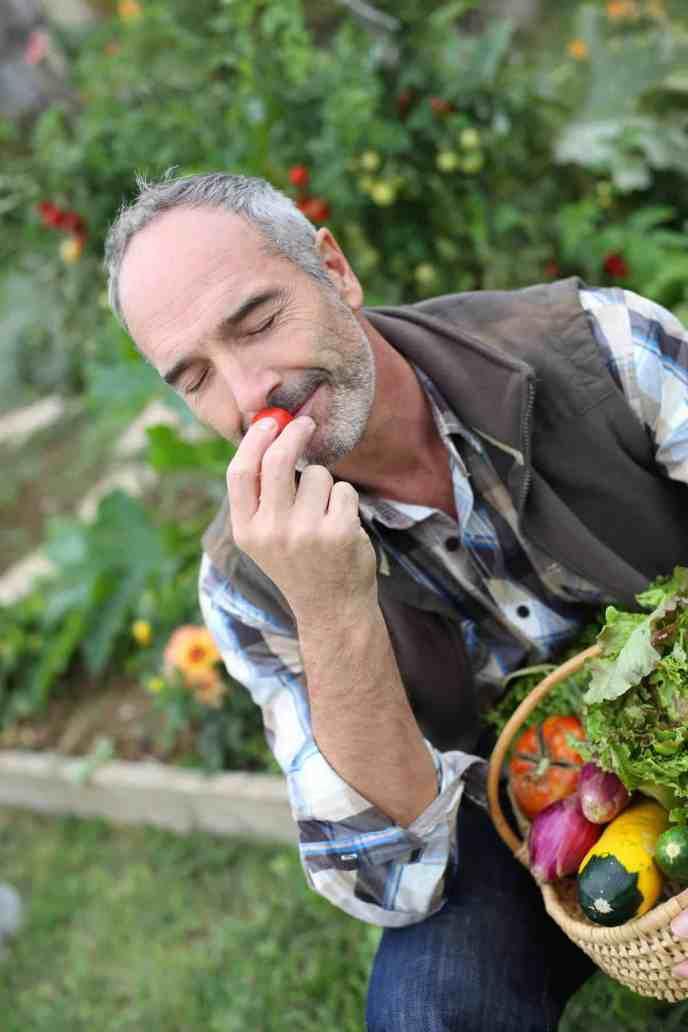 Man in garden smelling vegetable aromas