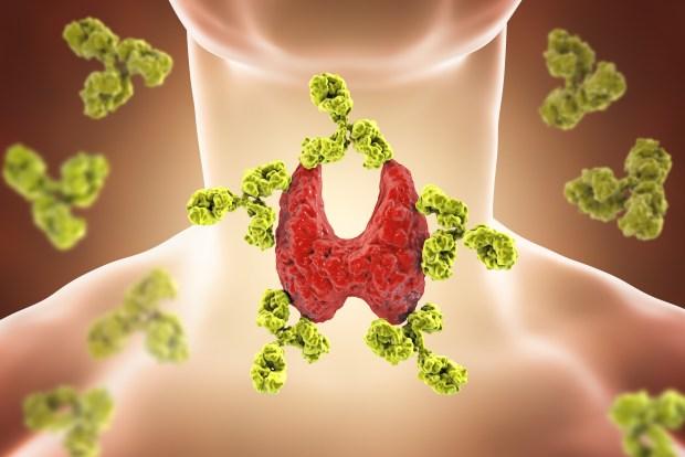 thyroid hormone binding. Linda Downey. Organic Health Journey.