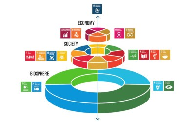 Making the Sustainable Development Goals work for local communities everywhere