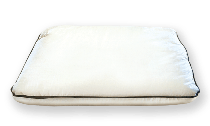 Organic Bedroom Travel Pillow Buckwheat Hull