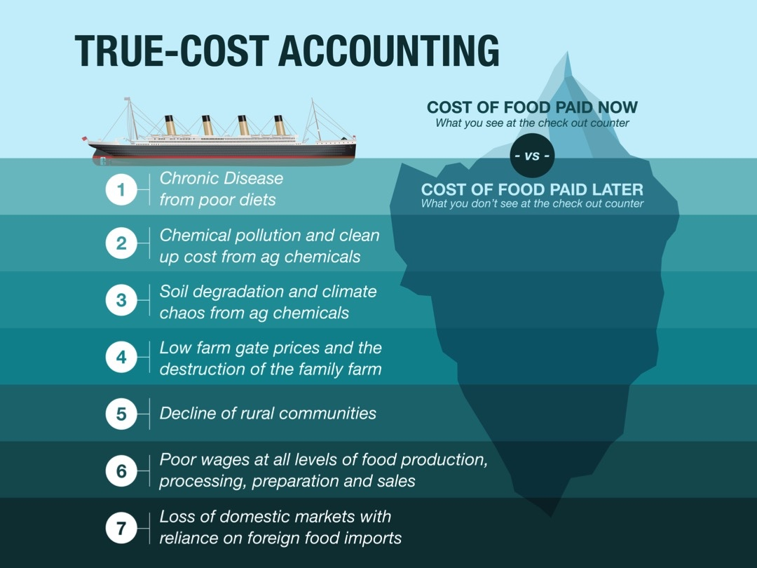 True Cost accounting Image 4-13-20 PM