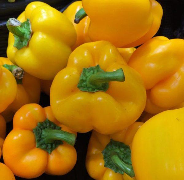 Pimiento amarillo. 500 gr.