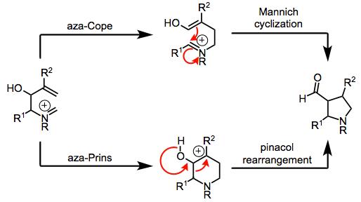AzaCopeMannich reaction  Organic Reactions Wiki