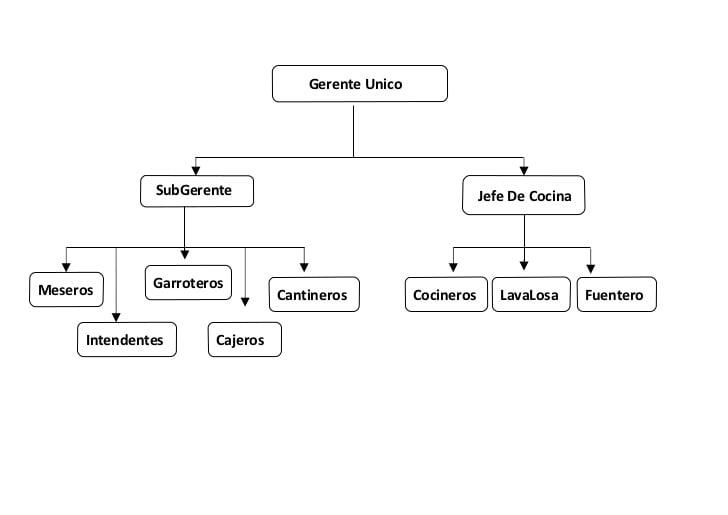 Conoce y aprende la estructura del Organigrama de un