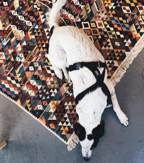 Snoopy auf handgearbeitetem Teppich