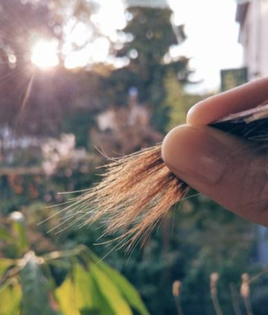 DeLuxe-NoPoo-Hair kein Spliss mehr