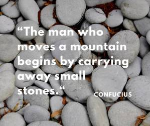 """The man who moves a mountain begins by carrying away small stones."""
