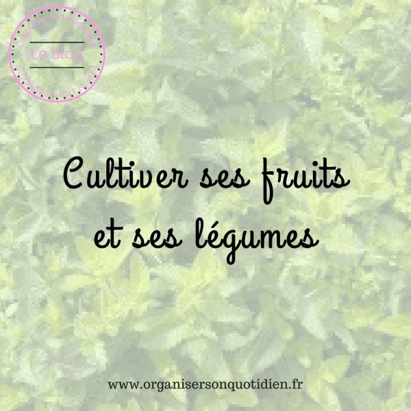 Cultiver ses fruits et légumes pour économiser