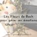 Les Fleurs de Bach pour gérer ses émotions