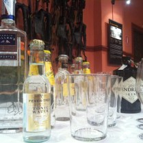 BeGin Taller Cata de Gin tonics por Eventos de Autor Museo de Carruajes