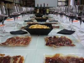 Catas de Vino y Jamón en Palacio de Abrantes_4