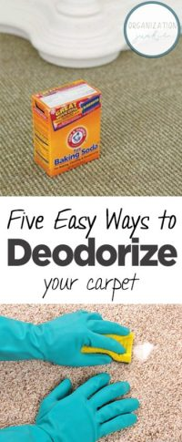 Five Easy Ways to Deodorize Your Carpet - Organization Junkie