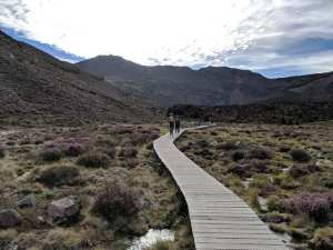 start of the Tongariro Crossing hike New Zealand