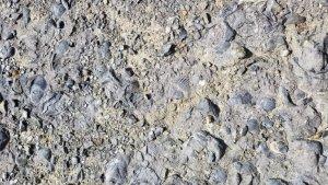Fossil Cliffs Maria Island Tasmania Australia