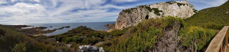 Rocky Cape National Park Tasmania Australia