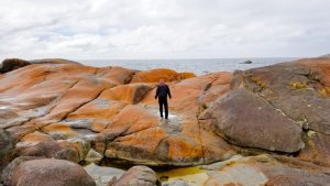 Bay of Fires Tasmania Australia