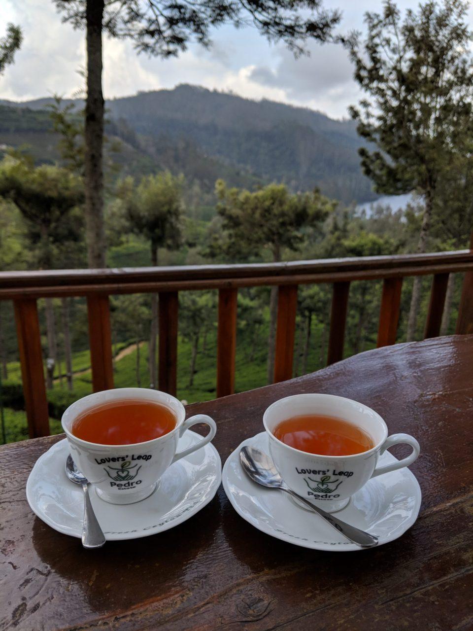 Pedro's Tea Estate
