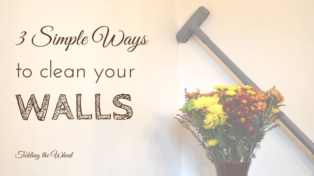 3 Simple Ways To Clean The Walls  How To Clean Walls