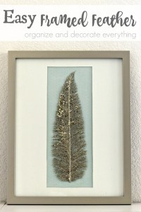 Easy Framed Feather - Organize and Decorate Everything