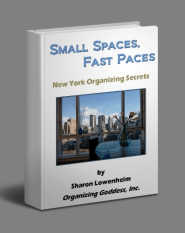 Organizing Goddess eBook, SMALL SPACES, FAST PACES: New York Organizing Secrets