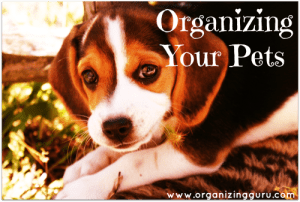 Organizing Your Pets