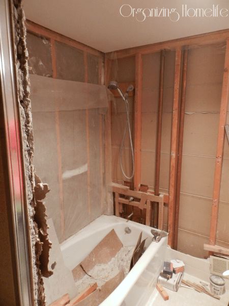 How To Demo A Bathroom  28 Images  Bathroom Demolition