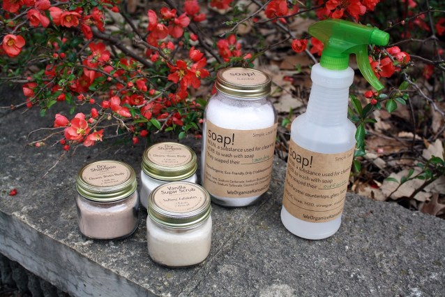 Organic Cleaning Products - Kansas City Professional Organizers - Soap Family - Smaller