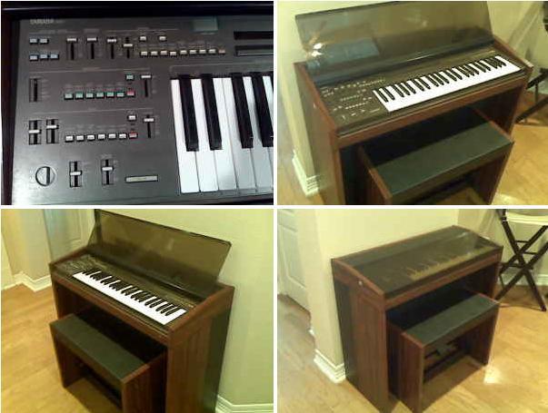 Organ Pron 171 No I Don T Own Them Stop Asking