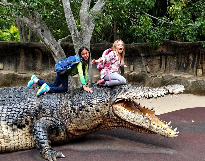 Playing at Australia Zoo