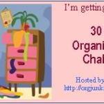 30 Day Organizational Challenge!